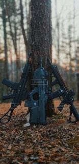 木に立て掛けられた銃の写真・画像素材[4212866]