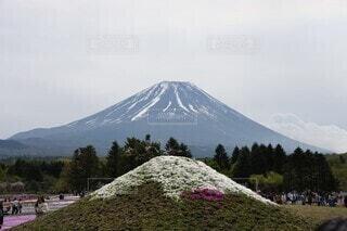 雪に覆われた山の写真・画像素材[3622087]