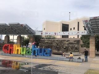 メキシコ チワワの写真・画像素材[3627672]