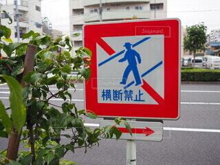 道路の側の標識の写真・画像素材[3697740]