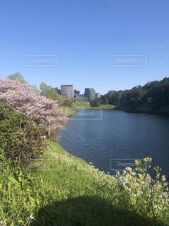 東京都 皇居横の写真・画像素材[3685093]
