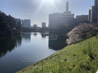 東京都 皇居横の写真・画像素材[3685091]