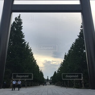 靖國神社の大きな鳥居の写真・画像素材[3646217]