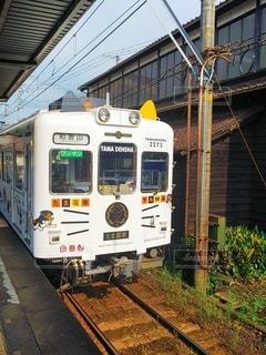 和歌山電鐵たま電車の写真・画像素材[3639873]