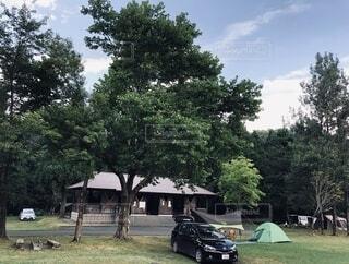 キャンプの写真・画像素材[3650184]