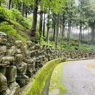 雲辺寺の仏像の写真・画像素材[3647164]