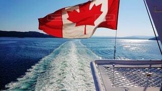 カナダ 国旗の写真・画像素材[3649269]