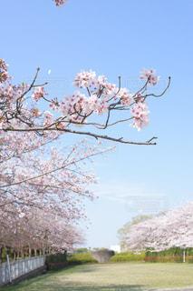 No.454223 風景