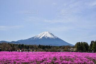 富士山の写真・画像素材[3671013]
