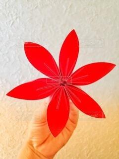 花のクローズアップの写真・画像素材[3695858]
