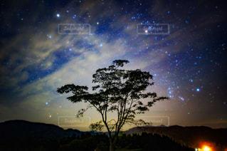 山古志の夜景の写真・画像素材[1872066]