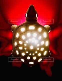 明るい光のクローズアップの写真・画像素材[4070079]