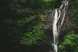 会津若松市 白糸の滝の写真・画像素材[3672280]