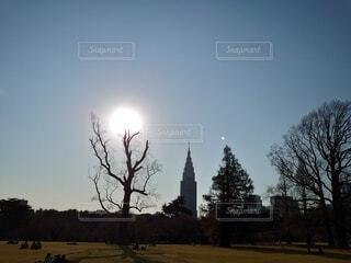 新宿御苑よりの写真・画像素材[3665587]