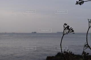 夕暮れの海の写真・画像素材[3671832]