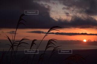海に沈む秋の夕陽の写真・画像素材[3671926]