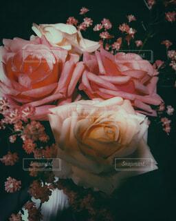 花のクローズアップの写真・画像素材[3673021]