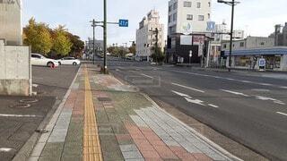 11/1 朝散歩 1の写真・画像素材[3835019]