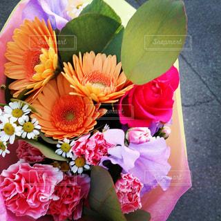 花の写真・画像素材[154267]
