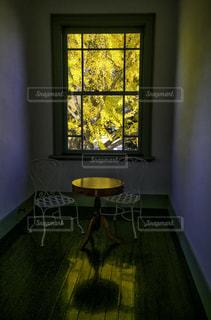窓越しに見える黄色に色付いたイチョウの木の写真・画像素材[237066]