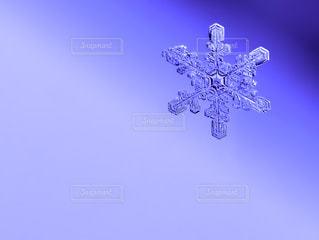 冬 - No.317188