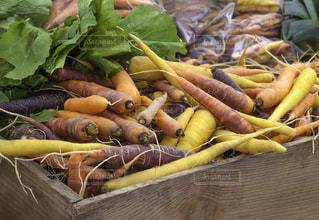 野菜 - No.693399