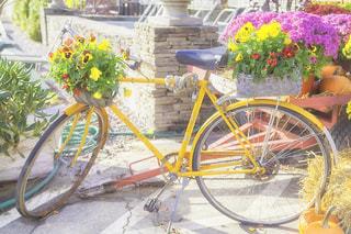 黄色の花の前に停まっている自転車 - No.710904