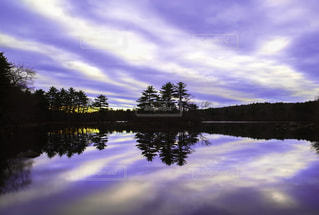 近くに池のアップの写真・画像素材[856044]