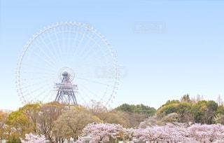 春の万博記念公園から見たOSAKA WHEELの写真・画像素材[1084286]
