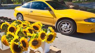 黄色の車を駐車場に駐車の写真・画像素材[1227103]