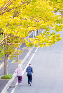 ジョギングをしているシニアのカップルの写真・画像素材[1259423]