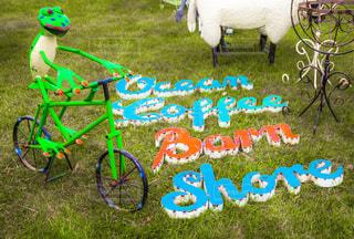 草の上に座っているカラフルな凧カバー フィールドの写真・画像素材[1260287]