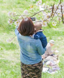 携帯で写真を撮っている親子の写真・画像素材[1606456]