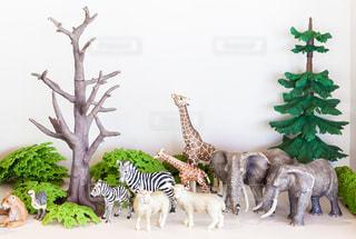 ミニチュアの動物たちの写真・画像素材[1633003]