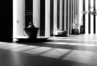 テーブルの上の鉢植えの観葉植物の写真・画像素材[1636361]