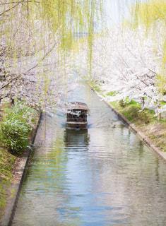 京都伏見の十石舟の写真・画像素材[1718792]