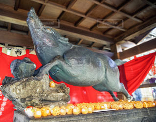 京都禅居庵のイノシシの像の写真・画像素材[1747156]