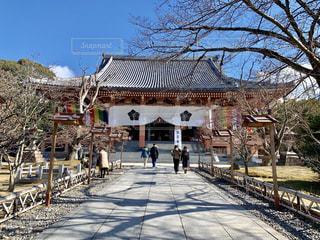 京都智積院の初詣の写真・画像素材[1785953]