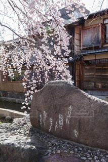 祇園白川のかにかくに碑の写真・画像素材[1876818]