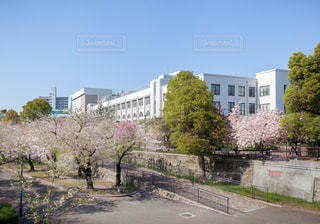 大阪造幣局本局と桜の写真・画像素材[2117094]