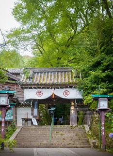 長楽寺山門の写真・画像素材[2335861]