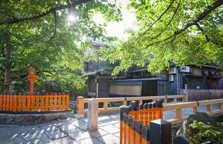 祇園白川の巽橋の写真・画像素材[2669374]