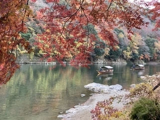 嵐山の屋形船の写真・画像素材[2759269]