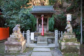 大豊神社の駒ねずみの写真・画像素材[2813596]