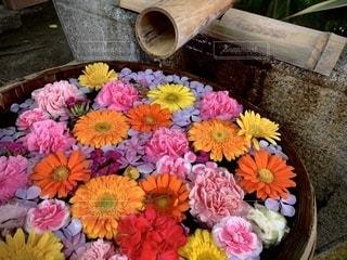 たくさんの花で飾られた手水鉢の写真・画像素材[3364361]