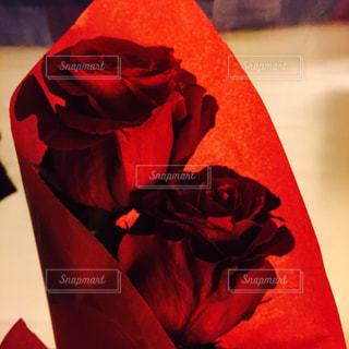 近くに赤いバッグのアップの写真・画像素材[891391]