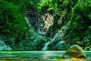エメラルドグリーンの水面の写真・画像素材[3697394]