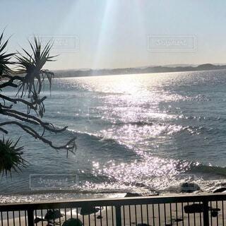 オーストラリアのビーチの写真・画像素材[3695798]