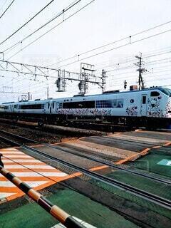 キティ列車の写真・画像素材[3697753]