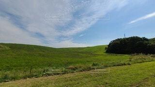 広大な草原の写真・画像素材[3718989]